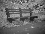 Park Bench #2